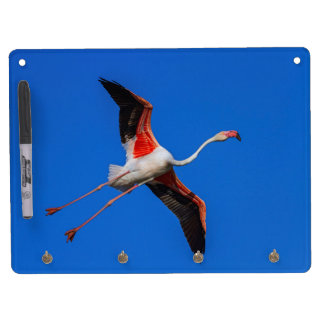 Greater flamingo, phoenicopterus roseus dry erase board with key ring holder