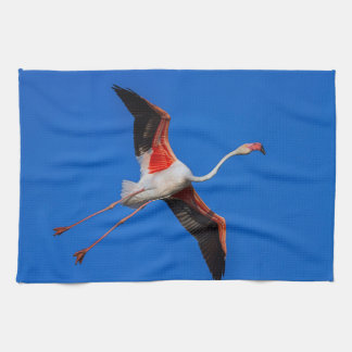 Greater flamingo, phoenicopterus roseus tea towel