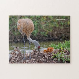 Greater Sandhill Crane Father and Child Jigsaw Puzzle