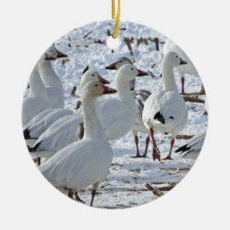 Greater Snow Geese in Cornfield (Winter) Ceramic Ornament