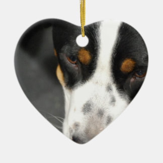 greater-swiss-mountain-dog-1.jpg christmas tree ornaments