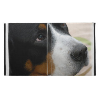 Greater Swiss Mountain Dog iPad Cases