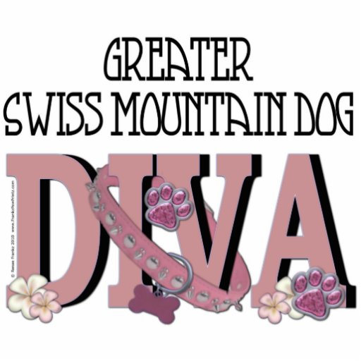 Greater Swiss Mountain Dog DIVA Photo Cut Out