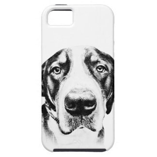 Greater Swiss Mountain Dog iPhone 5 Case