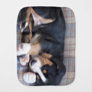 greater swiss mountain dog puppy burp cloths