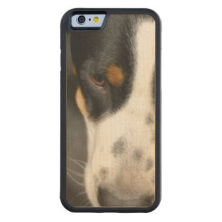 Greater Swiss Mountain Dog Maple iPhone 6 Bumper Case