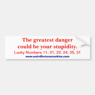 greatest danger (bumper sticker) bumper sticker
