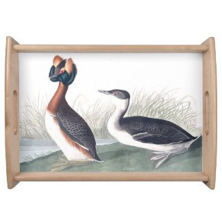 Grebe Birds Wildlife Animal Serving Tray