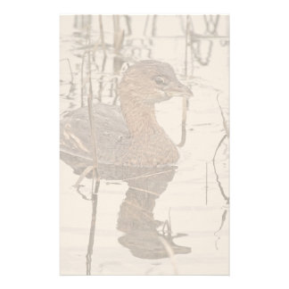 Grebe Birds Wildlife Animals Photography Customised Stationery