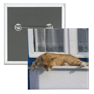 Greece Mykonos Curious orange tabby cat looks Pinback Buttons