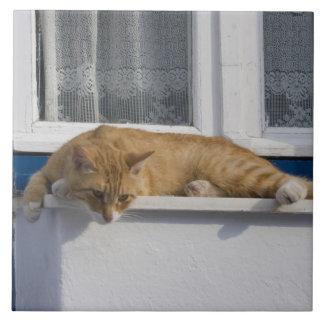 Greece, Mykonos. Curious orange tabby cat looks Large Square Tile
