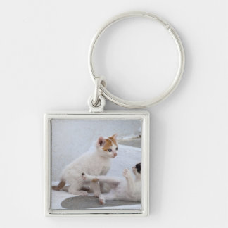 Greece, Mykonos, Kittens playing. Silver-Colored Square Key Ring