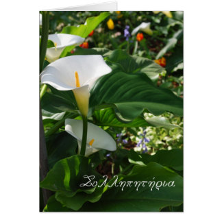Greek sympathy card with white calla lillies