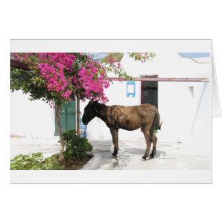 GreekIslandHouse.com Donkey Mascot Opa! Card