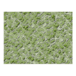 Green algae effect pattern. postcard