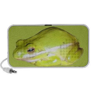 Green American Tree Frog Doodle Speaker