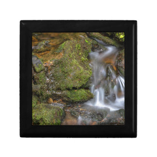 Green and Mossy Water Flow Gift Box