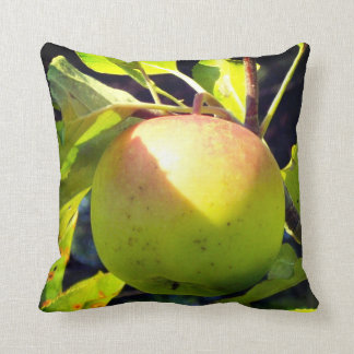 Green and pink apple cushion