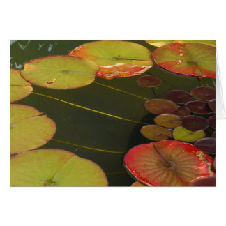 Green and Red Lilly pads Card