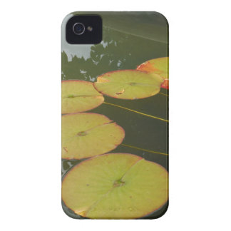 Green and Red Lilly pads iPhone 4 Case
