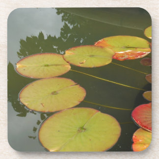 Green and Red Lilly pads Drink Coasters