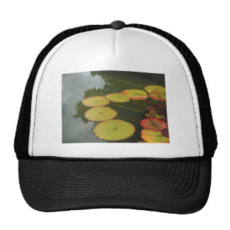 Green and Red Lilly pads Trucker Hat