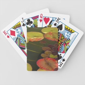 Green and Red Lilly pads Bicycle Card Deck