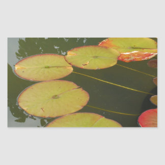 Green and Red Lilly pads Rectangular Sticker
