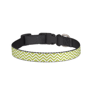 Green and White Zigzag Stripes Chevron Pattern Pet Collar