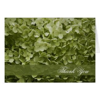 Green Annabelle Hydrangea Thank You Card