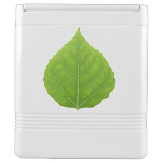 Green Aspen Leaf #11 Cooler