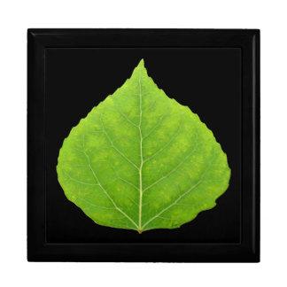 Green Aspen Leaf #11 Gift Box