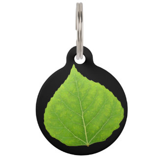 Green Aspen Leaf #11 Pet ID Tag