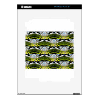 Green background skins for the iPad 2