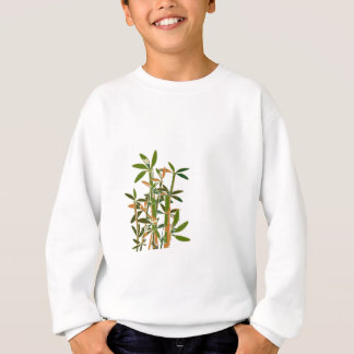 Green bamboo  isolated on white background shirt