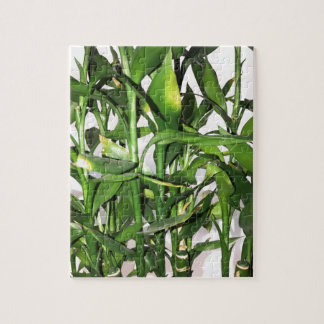 Green bamboo shoots and leaves jigsaw puzzle