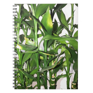 Green bamboo shoots and leaves notebook