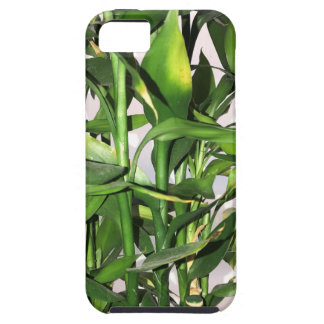 Green bamboo shoots and leaves tough iPhone 5 case