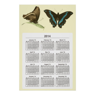 Green-banded Swallowtail Butterfly,  2014 calendar Print