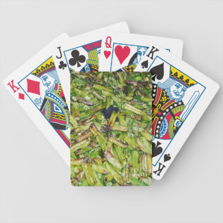 Green  Beans... Bicycle Playing Cards