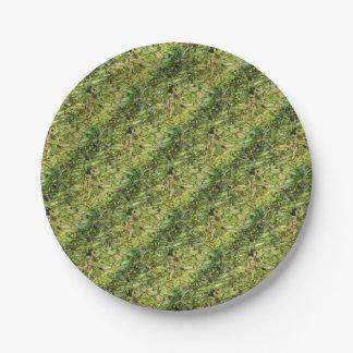 Green  Beans... Paper Plate