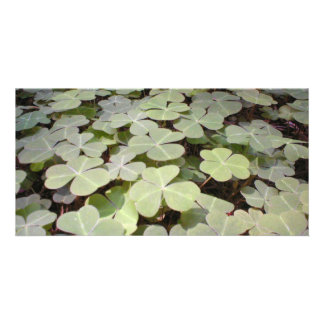 Green Bed Photo Greeting Card