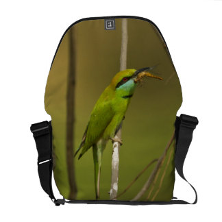 Green Bee-eater eating insect Commuter Bags