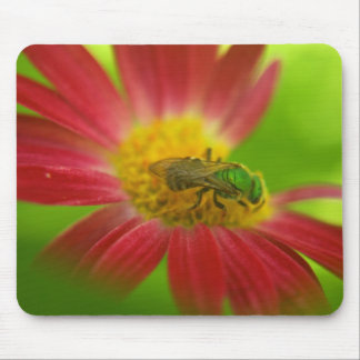 Green Bee Painted Daisy Mouse pad