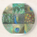 Green Blue Peacock photo collage Coaster