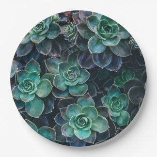 Green Blue Succulent Plants 9 Inch Paper Plate