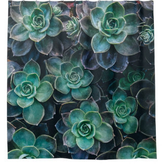 Green Blue Succulent Plants Shower Curtain
