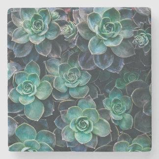 Green Blue Succulent Plants Stone Coaster