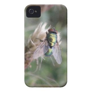 Green Bottle Fly Macro Blackberry Case