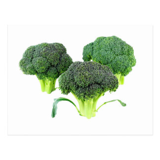 Green Broccoli Crowns on White Postcard